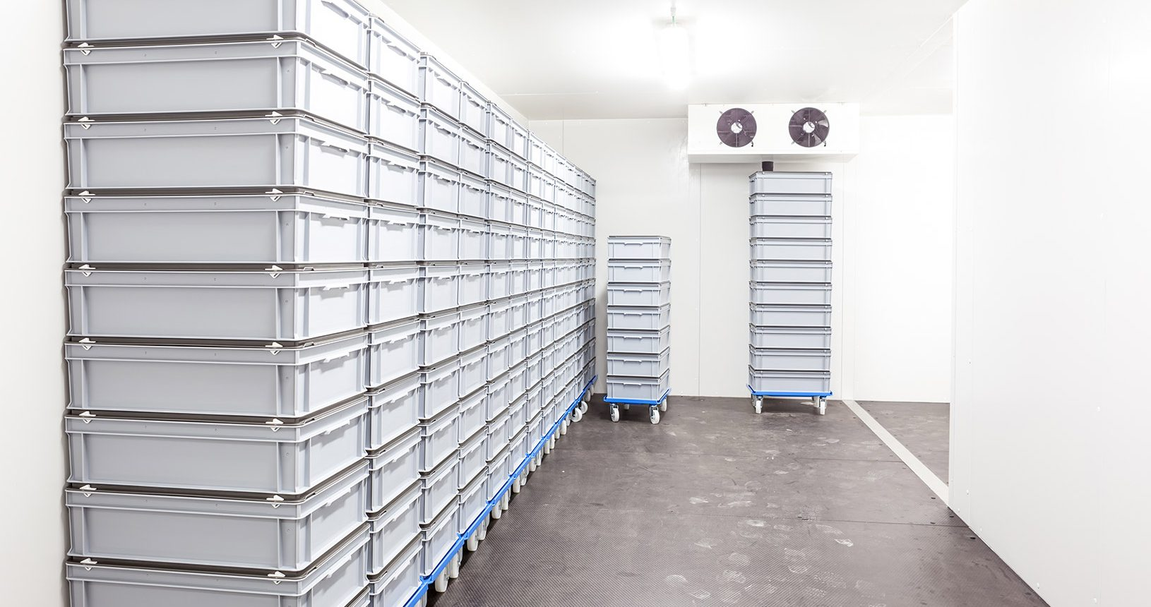 cold-storage-units-surrey