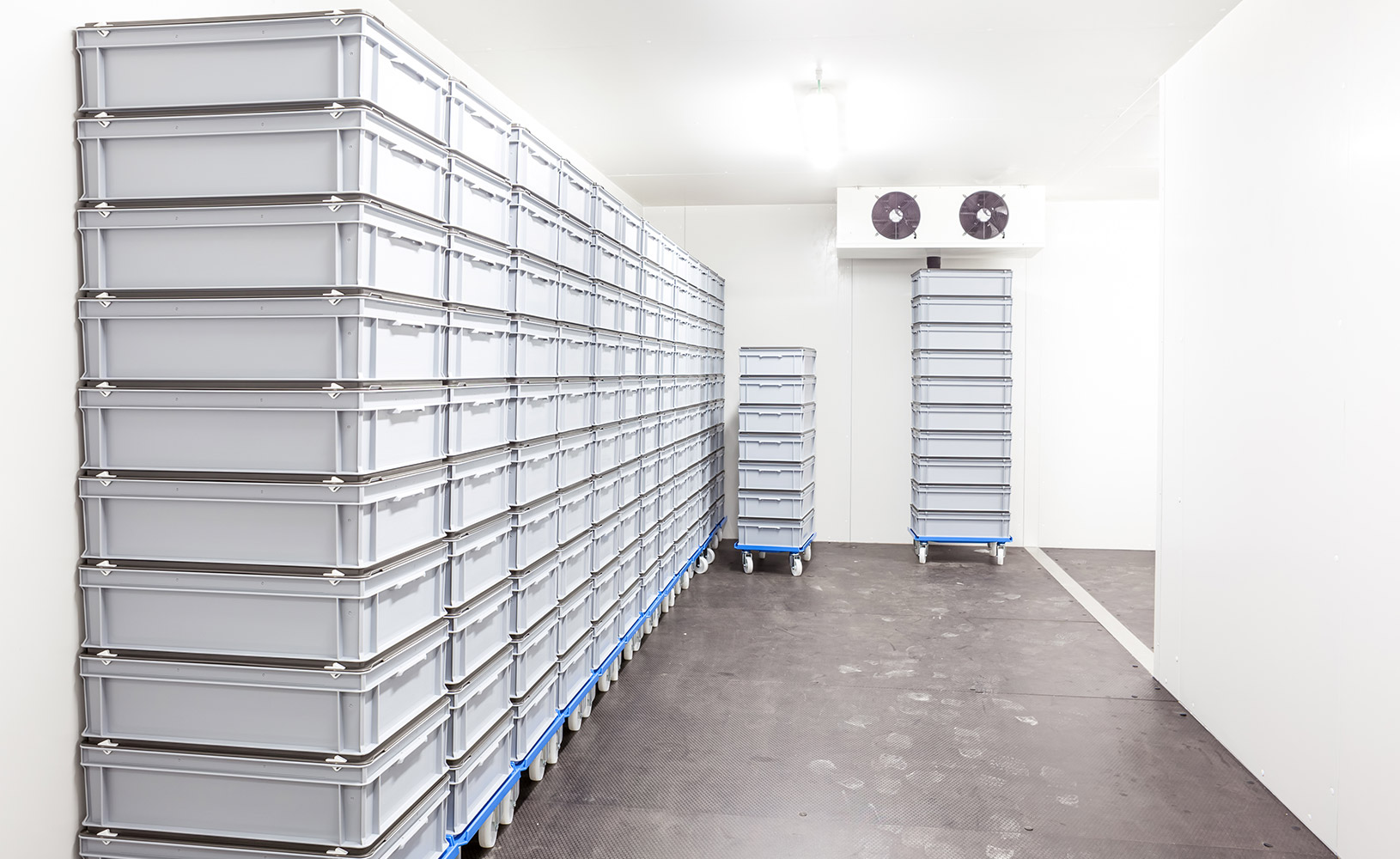 cold-storage-units-surrey  sc 1 st  Surrey Mechanical Contractor - HVAC Plumbing Heating and Gas & Photo Gallery - Emerald Green Mechanical